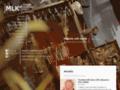 Náhled webu Muzeum loutkářských kultur Chrudim
