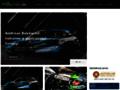 Náhled webu Rallycross.cz