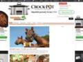 Náhled webu Recepty na doma