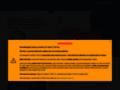 Náhled webu Revmatologický ústav