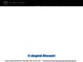 Náhled webu Rinceoirí