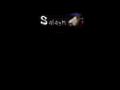 Náhled webu Salash