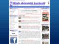 Náhled webu Výzkumné stanice v Antarktidě