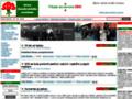 Náhled webu Strana demokratického socialismu