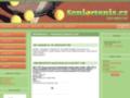Náhled webu Český seniorský tenis