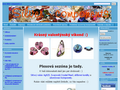 Náhled webu Silver components