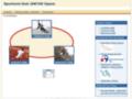 Náhled webu SK Jantar Opava