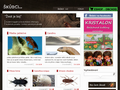 Náhled webu Škůdci