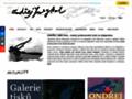 Náhled webu Smeykal, Ondřej