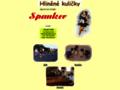 Náhled webu Běžecká stránka Spanker