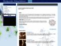 Náhled webu Slezský soubor Heleny Salichové