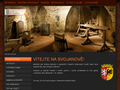 Náhled webu Svojanov