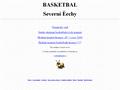 Náhled webu Basket severní Čechy
