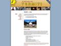 Náhled webu Termiti 36. oddíl Brno