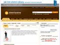 Náhled webu Účetní svět