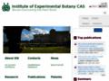 Náhled webu Ústav experimentální botaniky AV
