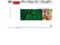 Náhled webu Urbanistické středisko Brno, spol. s r.o.