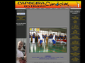 Náhled webu Capoeira Bohumín