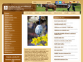 Náhled webu Valašské muzeum v přírodě Rožnov pod Radhoštěm