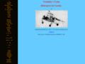 Náhled webu Vrtulníky v Česku