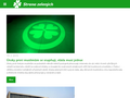 Náhled webu Strana zelených