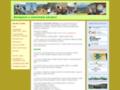 Náhled webu Zeměpisné sdružení Praha
